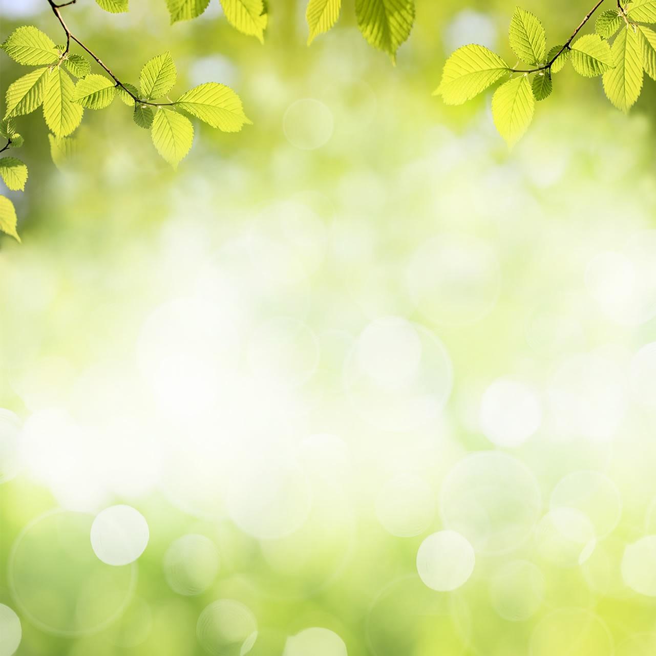 3e Fête des plantes et de la nature, le 12 juin 2021, à Bize